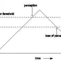 Thresholds for motion perception